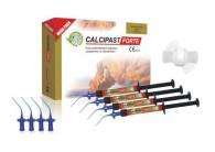 Calcipast Forte Mega Pack 4 x 2,1 g