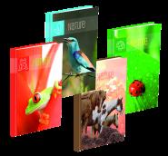 Kniha záznamní A5 65104 šitá, linka, 100 listů