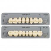 Vita zuby MFT, 8 ks